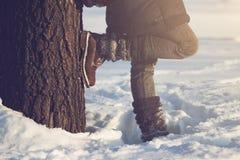 портрет похода вечера Крыма излучает зиму Украины солнца Стоковые Фотографии RF