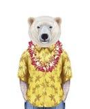 Портрет полярного медведя в рубашке лета с гаваискими леями Стоковые Фото