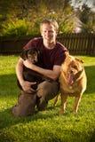 портрет предпринимателя собаки стоковые изображения rf