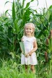 Портрет прелестной маленькой девочки в кукурузном поле на красивый день осени Сбор с детьми r стоковое фото rf
