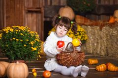 Портрет прелестной усмехаясь девушки представляя с корзиной яблока в интерьере падения деревянном Стоковая Фотография RF
