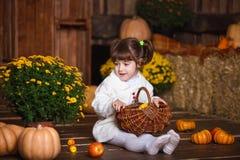 Портрет прелестной усмехаясь девушки представляя с корзиной яблока в интерьере падения деревянном Стоковое Фото
