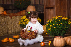 Портрет прелестной усмехаясь девушки представляя с корзиной яблока в интерьере падения деревянном Стоковые Фото