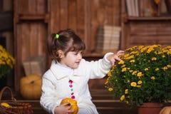 Портрет прелестной усмехаясь девушки представляя с оранжевой тыквой в интерьере падения деревянном Стоковые Изображения