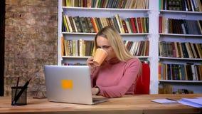 Портрет привлекательной кавказской девушки с прошивкой внимательно работая с напитком напитков ноутбука горячим на книжных полка акции видеоматериалы