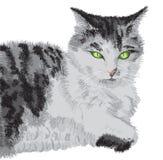 портрет проиллюстрированный котом Стоковые Изображения RF