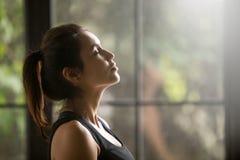 Портрет профиля молодой привлекательной женщины yogi Стоковое Изображение