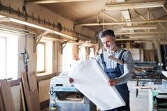 Портрет работника человека в мастерской плотничества Стоковая Фотография RF