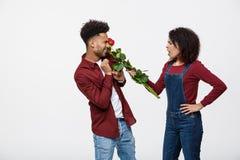 Портрет разочарованной молодой женщины держа красную розу с пока стоящий и сердитый на ее парне изолированном сверх стоковая фотография