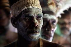 Портрет ратника Asmat. стоковая фотография rf