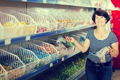 Портрет радостный покупать женщины конфеты стоковое изображение