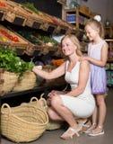 Портрет радостных зеленых цветов женщины и девушки покупая Стоковая Фотография