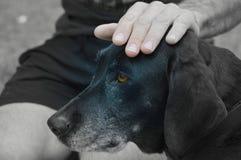 портрет ретро Стоковое фото RF