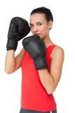 Портрет решительно женского боксера сфокусировал на ее тренировке Стоковые Изображения RF