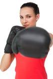 Портрет решительно женского боксера сфокусировал на тренировке Стоковое Изображение