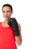 Портрет решительно женского боксера сфокусировал на тренировке Стоковые Изображения
