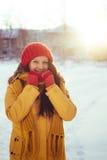 Портрет романтичной девушки на заходе солнца, восходе солнца, золоте в час на морозный зимний день Стоковое Изображение