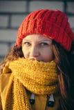 Портрет романтичной девушки на заходе солнца, восходе солнца, золоте в час на морозный зимний день Стоковые Фотографии RF
