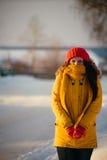Портрет романтичной девушки на заходе солнца, восходе солнца, золоте в час на морозный зимний день Стоковые Изображения RF