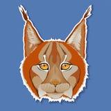 Портрет рыся на голубой предпосылке также вектор иллюстрации притяжки corel Стоковая Фотография RF