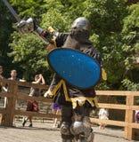 Портрет рыцаря во время поединка стоковые фото
