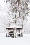 Портрет семьи в парке волшебства зимы Стоковое фото RF