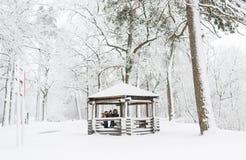 Портрет семьи в парке волшебства зимы Стоковые Изображения