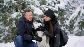 Портрет семьи милых счастливых пар обнимая с их собакой маламута лижа сторону человека Смешной носить щенка сток-видео
