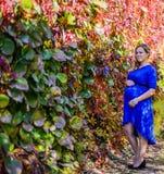 Портрет симпатичная молодая белокурая беременная женщина Стоковые Фото