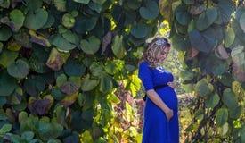 Портрет симпатичная молодая белокурая беременная женщина Стоковое фото RF