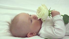 Портрет симпатичного ребенка младенца при голубые глазы держа чувствительную чисто белую розу акции видеоматериалы