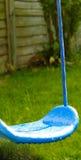 Портрет сини Стоковое фото RF