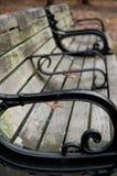 Портрет скамейки в парке Стоковые Изображения RF