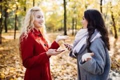 Портрет 2 смеясь над женщин говоря outdoors в парке осени Стоковое Фото