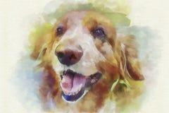 Портрет собаки картины цифров Стоковая Фотография RF