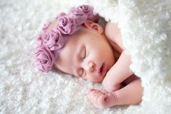 Портрет спать newborn младенца Стоковое Изображение