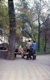 Портрет старика играя шахматы в парке стоковые фотографии rf