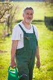 Портрет старшего садовника в его саде Стоковые Изображения