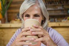 Портрет старшей женщины имея кофе Стоковое Фото