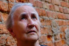 Портрет старшей женщины смотря вверх стоковая фотография rf