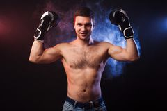 Портрет студии мышечного боксера в профессиональных перчатках Eu стоковые фотографии rf