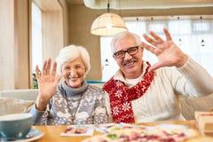 Портрет счастливых старших пар в кафе стоковые изображения