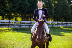 Портрет счастливой верховой лошади человека на поле Стоковые Фото