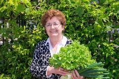Портрет счастливой домохозяйки с сырцовым свежим овощем Стоковое Изображение RF
