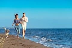 Портрет счастливой пары с собаками на пляже Стоковая Фотография