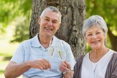 Портрет счастливых старших пар провозглашать шампанское на парке Стоковые Изображения