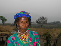 Портрет татуированной женщины Poli племени Mbororo aka Wodaabe, Камеруна Стоковая Фотография