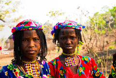Портрет татуированной женщины Poli племени Mbororo aka Wodaabe, Камеруна Стоковые Изображения