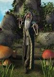 Портрет тела сказки полный старого волшебника с серой бородой стоковые фотографии rf