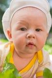 портрет травы младенца лежа Стоковая Фотография